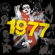 1977 - Punk & New Wave Tribute Band